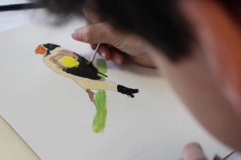Portrait d'oiseaux - Musartdit (41)