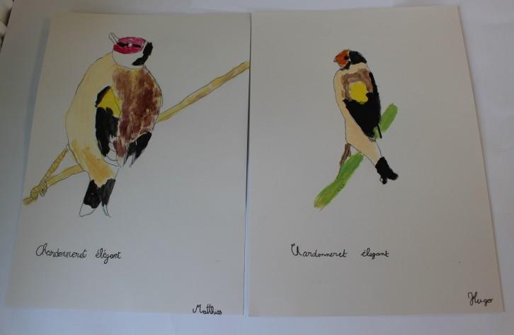 Portrait d'oiseaux - Musartdit (47)