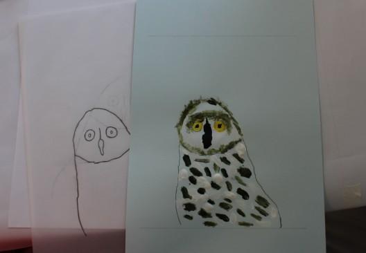 Portrait d'oiseaux - Musartdit (50)
