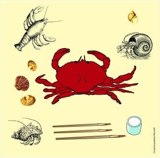 Visuel Portrait de crustacés - Musartdit