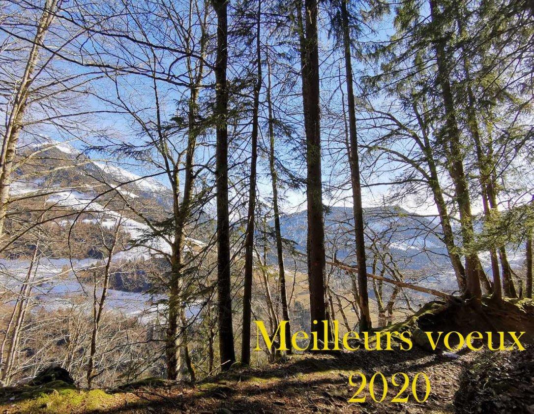 Voeux 2020 - Musartdit
